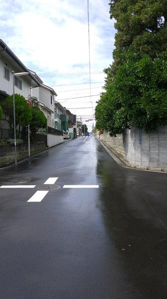 雨上がり自宅近辺.JPG