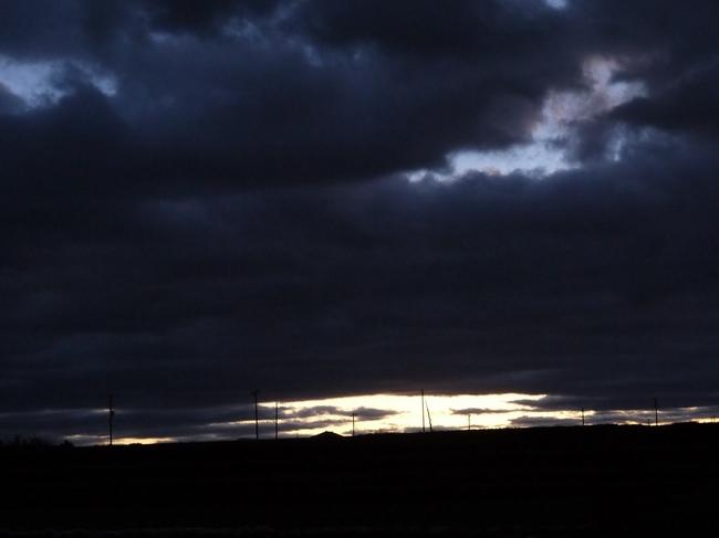 0556_ソレイユの丘.JPG