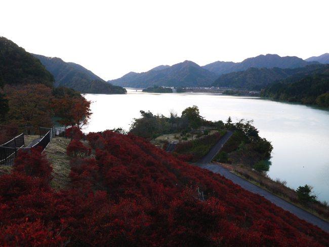 0618_宮ヶ瀬湖日の出.JPG